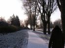 Winter langs Watermolenbeek